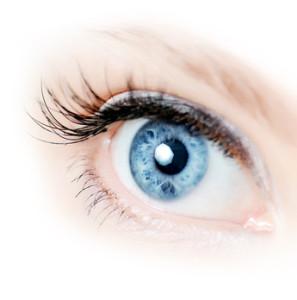100 sicher bestellen kontaktlinsen auf rechnung kaufen. Black Bedroom Furniture Sets. Home Design Ideas