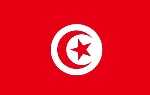 Fahne von Tunesien